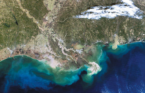 Food web culturing science biology as relevant to us earthly satellite image of the northern gulf of mexicomississippi delta showing hypoxic coastal water light blue this color change is due to excessive nutrients sciox Choice Image